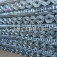 钢筋焊网 钢筋网片汇之鑫生产焊接网 煤矿支护网 冷轧带肋网片