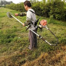 汽油茶园松土除草机 杂草苜蓿收割机 富兴树下杂草清理机图片