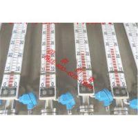 东兴侧装顶装磁翻板液位计 侧装顶装磁翻板液位计UFS-AP的使用方法
