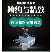 浙江旭力zw20小型化助上真空断路器厂家价格质量图纸安装尺寸