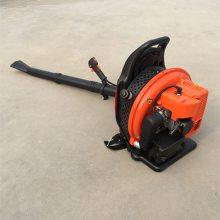 强风力路面吹尘吹雪机 汽油两冲程背负式吹雪机 工地除尘专用吹风机
