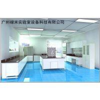 食品理化检测实验室建设,实验室家具,通风柜