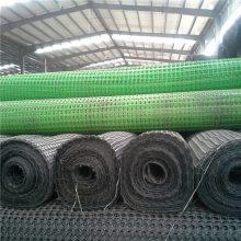 三维植被网 钢塑土工格栅厂家 土工格栅厂家