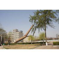 http://himg.china.cn/1/4_356_236392_450_300.jpg