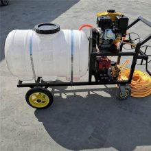 圣鲁牌汽油高压喷雾器 安徽农用打药机 远程喷雾器批发价格