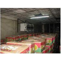 北京朝阳区香蕉保鲜冷藏库厂家建设