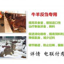肉牛饲料添加剂提高肉牛采食量