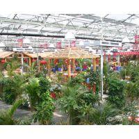 生态餐厅系列-玻璃温室