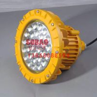 SBD85-40颗灯珠100wLED防爆灯IICT6