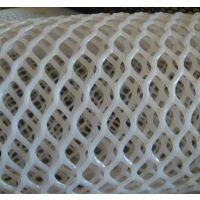 福瑞德-06 白色PE塑料养殖网厂家定制:15131879580
