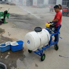 农业汽油喷雾器 大容量喷雾器 圣鲁牌