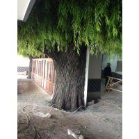 水泥包柱柳树 紫玉山庄仿真树造景 餐厅生态园假树雕塑