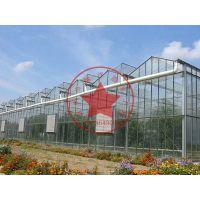 生态温室餐厅观光农业大棚造价多少钱?青州瀚洋玻璃连栋温室