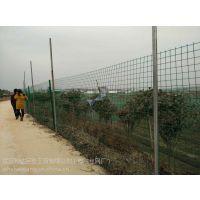 鱼塘防护网 养鱼农户鱼池塘四周隔离专用围网 绿色铁丝栏网厂家