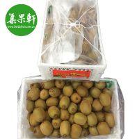 智利进口绿心奇异果 猕猴桃新鲜水果批发市场直供货源
