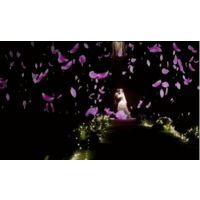 深圳3D全息宴会厅 裸眼3D 3D婚礼 中国全息投影