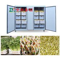 贵州毕节哪有卖自动生豆芽机械的 全自动豆芽机多少钱