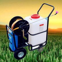 直销苹果园手推式喷雾器养殖拉管式防疫机新款公园电动打药机