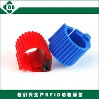 RFID动物脚环 符合标准ISO11784/785 电子脚环 EM4305鸽子脚环