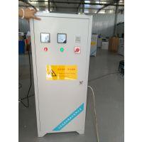 40g/h臭氧发生器臭氧机-水产养殖杀菌消毒控制氨氮和亚盐