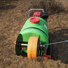 生产供应汽油打药车农用推车喷雾器160L机动喷药机