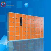 天瑞恒安 TRH-ZWM-70 电子柜厂家,山东菏泽电子柜厂家
