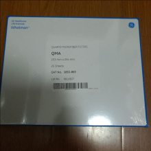 GE Whatman方形石英滤膜 8*10英寸Grade QMA 1851-8866