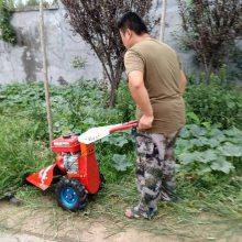 汽油剪草机 推车式剪草机 圣鲁机器