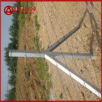围墙铁线厂家供货 刺铁丝围墙铁线生产基地 刺铁丝立杆哪里