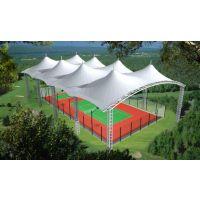 荥阳膜结构 钢及合金膜结构网球场