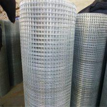 大丝养殖电焊网 电焊网卷径 广州铁丝网
