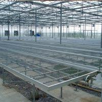 苗床网 大棚养花网 移动苗床网 镀锌温室苗床 花架网
