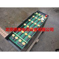 杭州销售代理商霍克叉车蓄电池5PzS400 价格