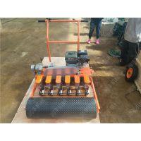 卷心菜播种机 汽油自走式精播机 莴苣播种机润丰