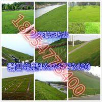 http://himg.china.cn/1/4_372_239090_289_289.jpg
