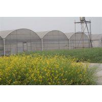 重庆秀山土家民族风生态餐厅温室风机水帘降温3万平方厂家报价