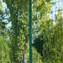 养鸡防护网 浸塑护栏网 圈地铁丝网