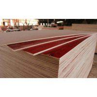 江西南昌建筑木模板、混凝土模板、胶合板、送货到工地 有正规增票