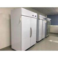 器械恒温恒湿储存箱 医疗器具恒温恒湿存放柜