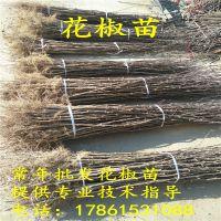 http://himg.china.cn/1/4_373_236558_200_200.jpg