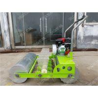 汽油蔬菜种植设备 手推式单行精播机 汽油6行白菜播种机