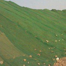 绿色盖土网 黑色遮阳网 塑料覆盖网价格