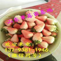 http://himg.china.cn/1/4_374_240272_800_800.jpg