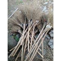 金竹牌大竹扫帚,柄长轻便高效。结实使用寿命长。是你从来没用过的好扫帚。