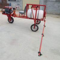 自走式喷药机 富兴牌喷杆可以伸缩打药车 喷雾器视频