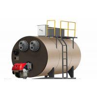 迎宾LDR0.03绿色环保型生活锅炉室燃炉中压沼气蒸汽锅炉