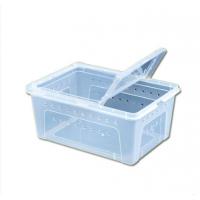 爬虫饲养盒、昆虫饲养盒昆虫饲养缸大号养虫盒现货批发昆虫幼虫饲养盒
