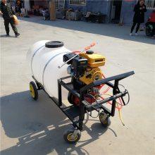 圣鲁多功能汽油喷雾器 大马力农用杀虫喷雾器