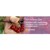 SAP Business One食品行业ERP-上海达策