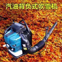 重庆树叶吹吸机 启航背负式吹雪机 除尘大棚吹雪机